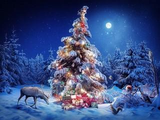 Собирать пазл From Santa Claus онлайн