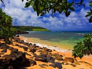 Собирать пазл Kauai beach on Hawaii онлайн