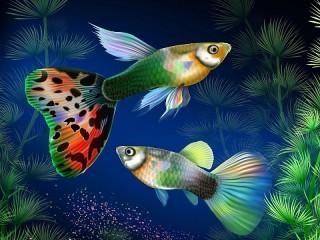Собирать пазл Underwater world онлайн