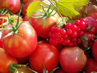 Собирать пазл Tomatoes and viburnum онлайн
