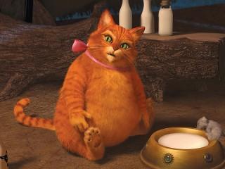 Собирать пазл Fat cat онлайн