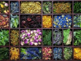 Собирать пазл The dried flowers онлайн