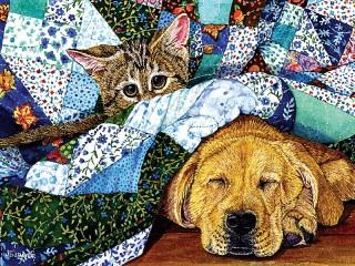 Собирать пазл Cat and dog онлайн