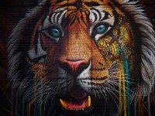 Собирать пазл Tiger онлайн