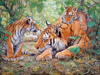 Собирать пазл Tigress with cubs онлайн