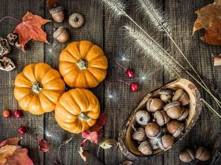 Собирать пазл Pumpkins and acorns онлайн