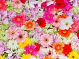 Собирать пазл Flower carpet онлайн