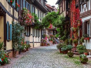 Собирать пазл Blooming Germany онлайн