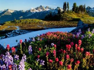 Собирать пазл Winter-summer in mountains онлайн