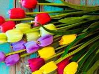 Собирать пазл Tulips in a bouquet онлайн