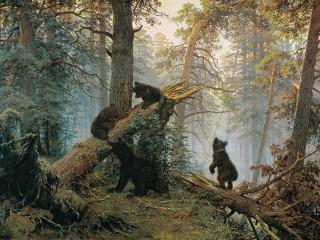 Собирать пазл Morning in a pine forest онлайн