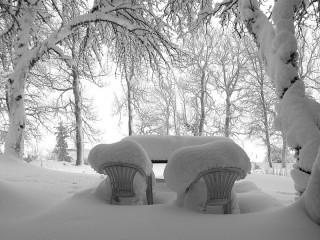 Собирать пазл In the power of snow онлайн