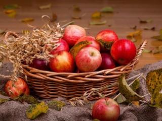 Собирать пазл The apples in the basket онлайн