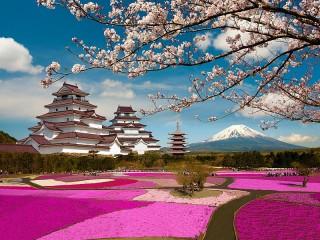 Собирать пазл Aizu-Wakamatsu castle онлайн