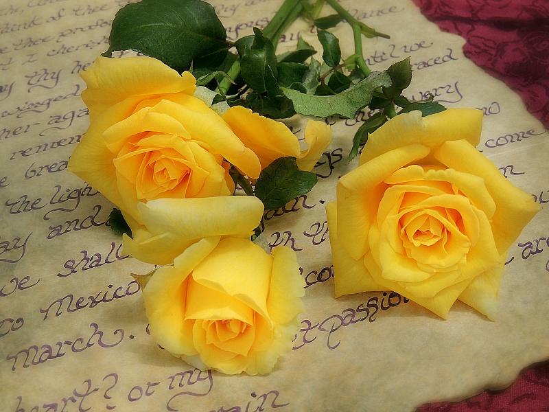 Puzzle Sammeln Puzzle Online - Zheltie rozi