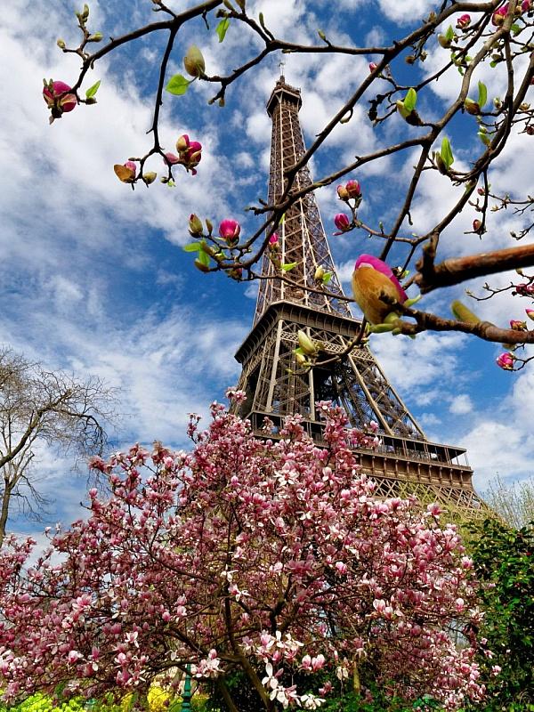 Puzzle Sammeln Puzzle Online - Spring in Paris
